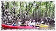 cayacking en los manglares