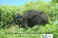Precolumbian Stone Spheres in Costa Rica 5