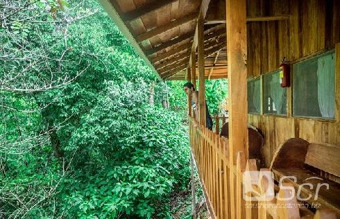 Los Campesinos Ecolodge in Quepos